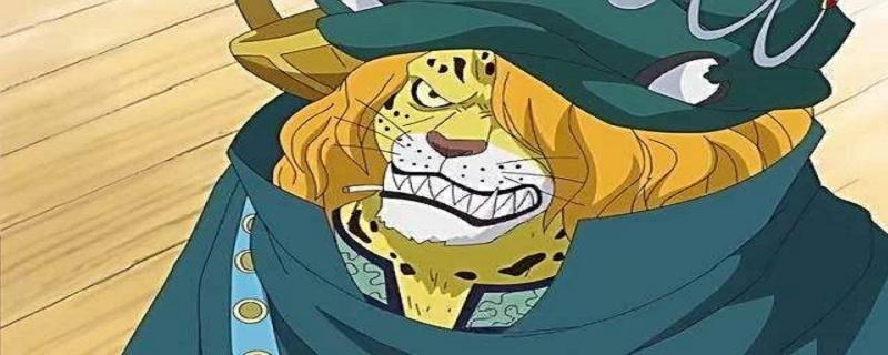 和海贼王有交集的豹子叫什么