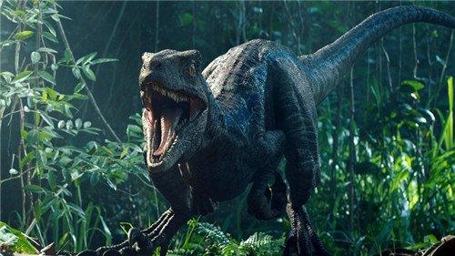 《侏罗纪世界3》开机,恐龙与人类谁能争霸地球?