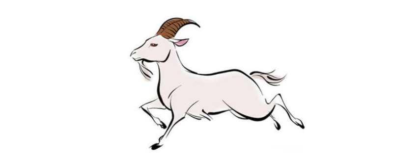 2020年属羊女人的全年运势