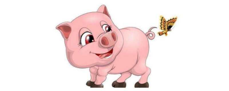 """""""十猪九苦""""?1983年出生的属猪人运势如何?"""