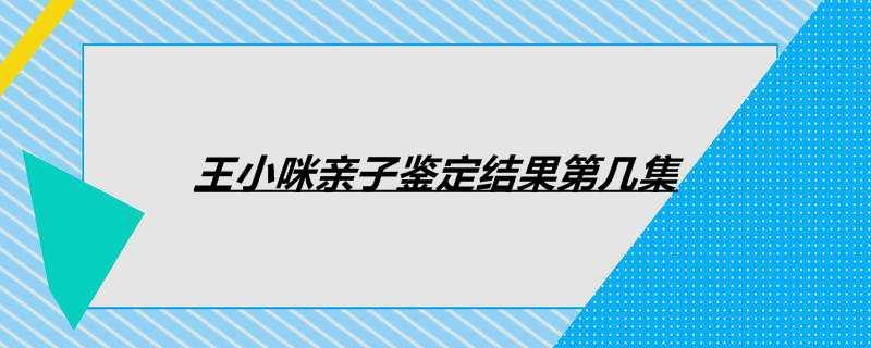 王小咪亲子鉴定结果第几集